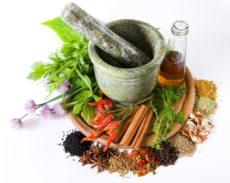 Böbrek ağrısı gidermek için kullanılan bitkiler